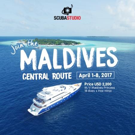 maldivescentral.jpg